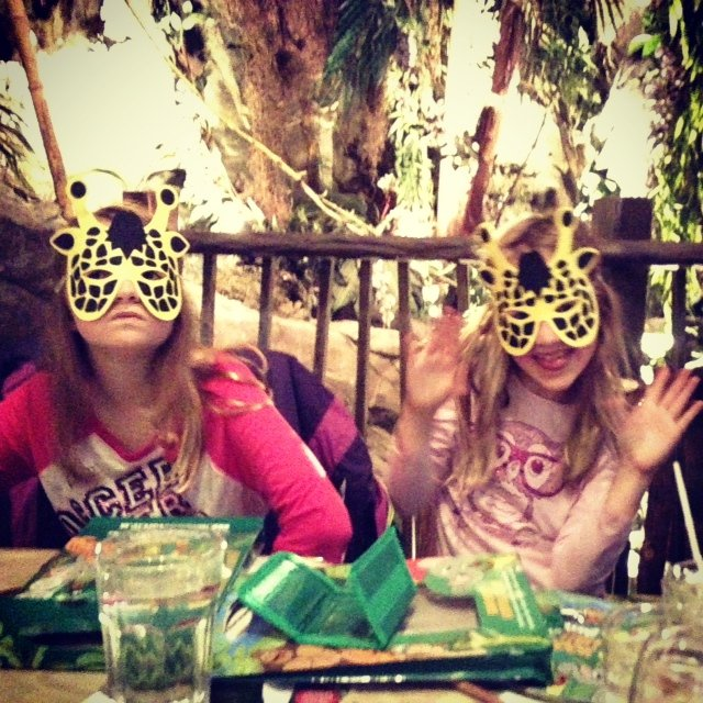 The Rainforest Cafe is an adventure, not just a meal, and a fun way to educate children about the Rainforest.