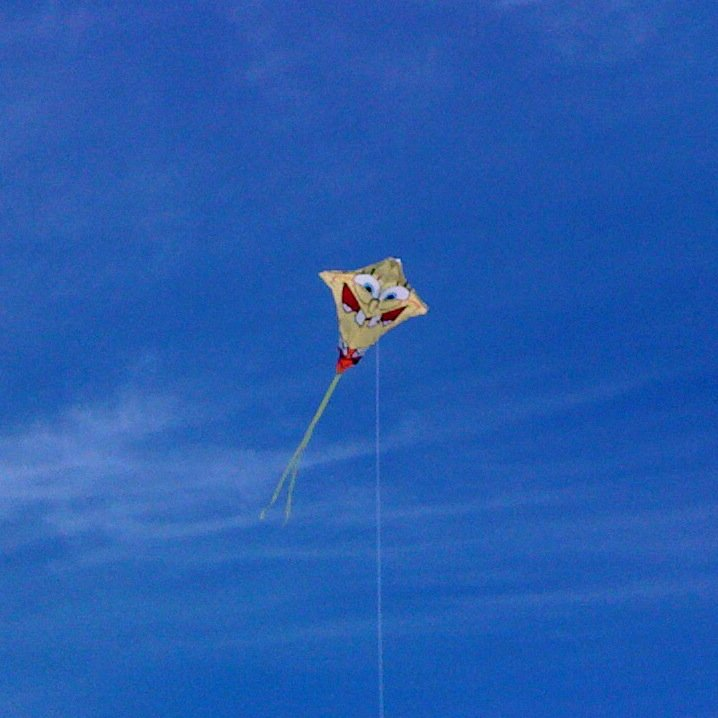 This pic was taken on one of our California trip, on a beach in Santa Cruz. It was one of the first times the girls got a kite to stay up for more than 5 minutes. Isn't it high?!