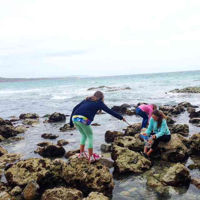 The girls can spend hours with a net and bucket searching for sea critters. Catch Freshwater Bay when they tide is out, and it is a perfect spot for rock pooling.