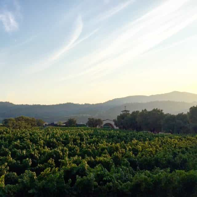 The view at dusk from the Napa Valley Wine Train! What a memorable experience - for us and the kids! A 3-course dinner on a 20th Century Pullman train while sight-seeing on a 25-mile track through the heart of Napa Valley. The girls felt very grown up!