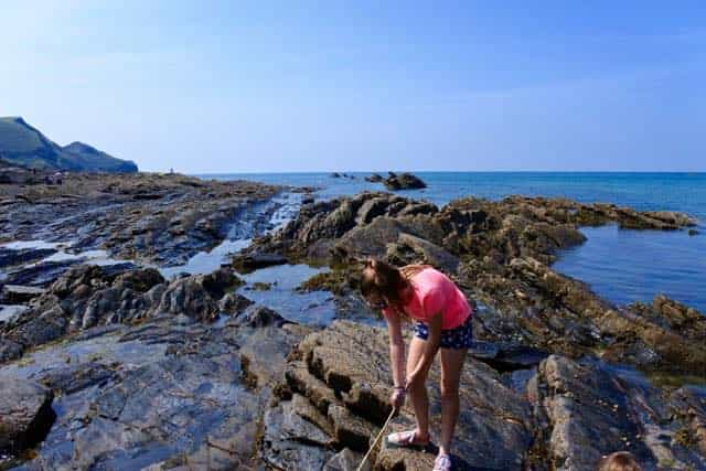 rock pooling in crackington haven