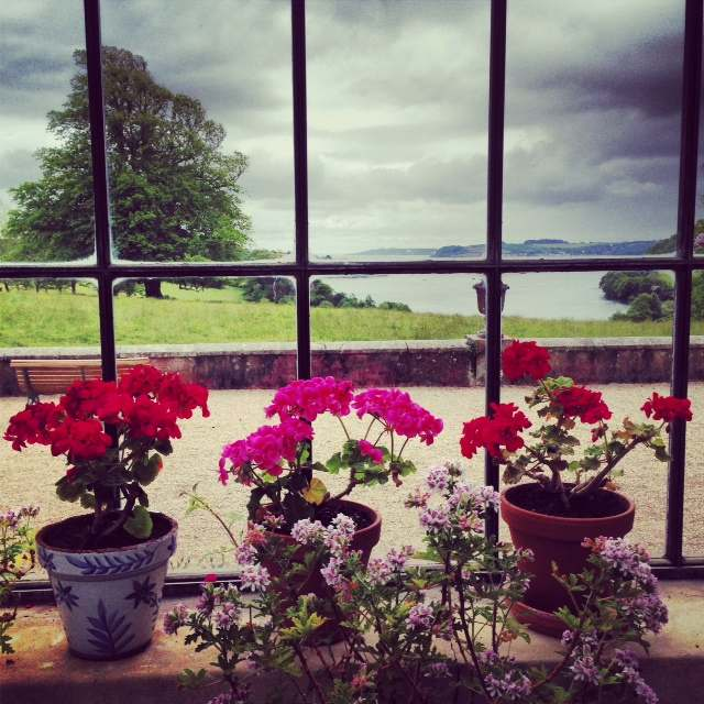 The country house at Trelissick recently opened to the public. Here the view from the conservatory overlooking the Fal Estuary.