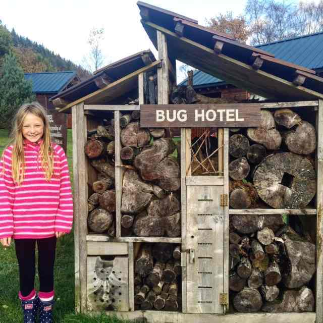 It's always fun to see who has checked into the Bug Hotel at Forest Holidays.