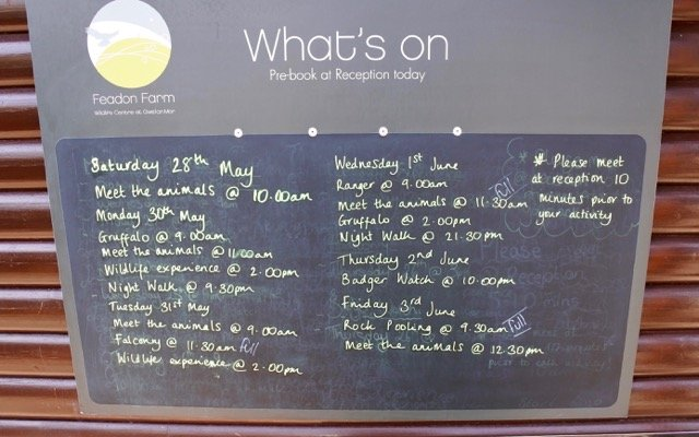 There's loads to do at Gwel an Mor. Check out the activity board to see what's on.