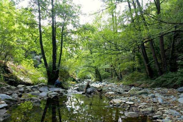 Montseny Nature Park